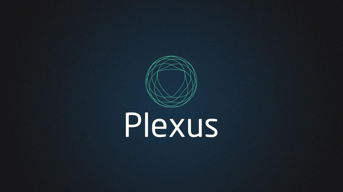 Plexus Consultancy 2