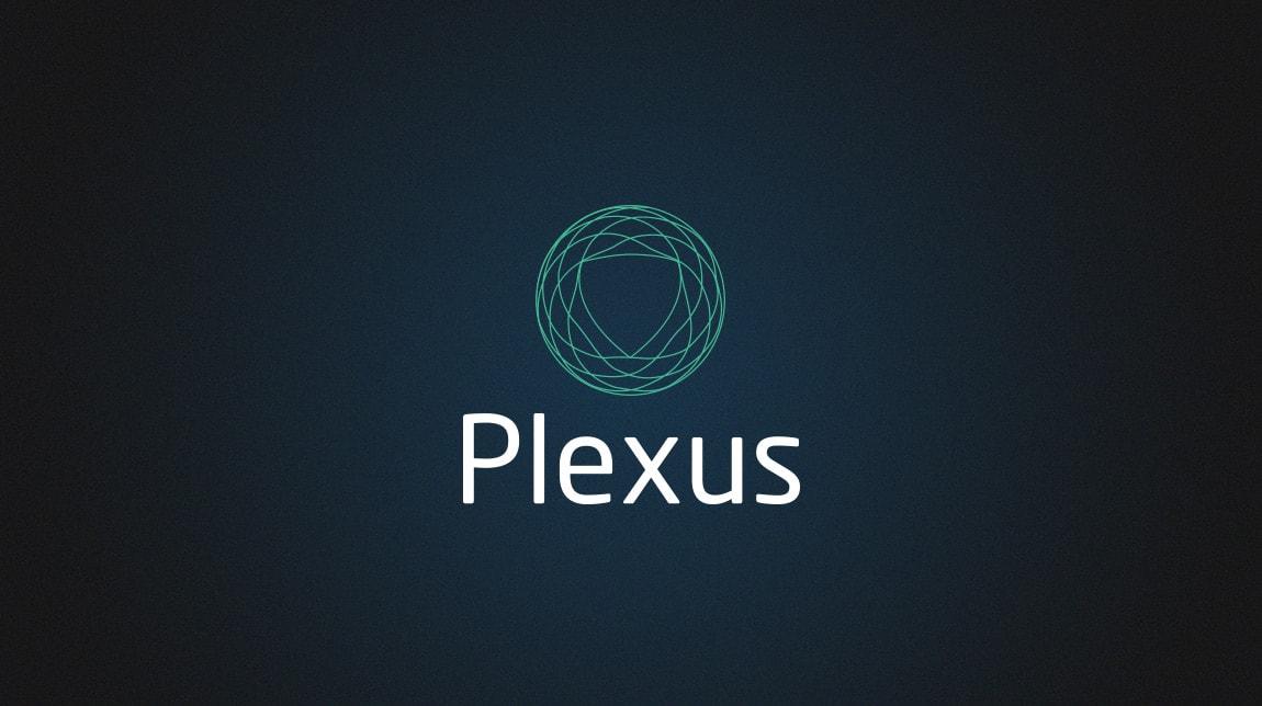 Plexus Consultancy
